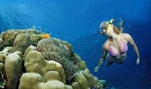 Snorkeling 01